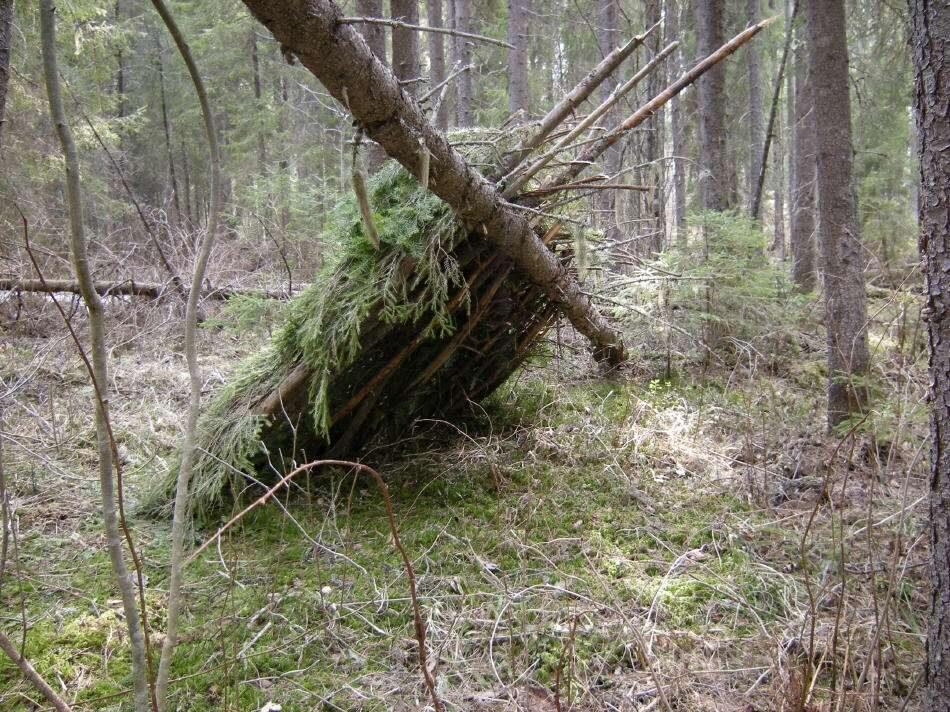 Шалаши в лесу своими руками фото